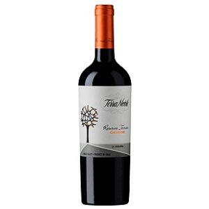 Vinedos-Terranoble-Carmenere-Reserva-Terroir